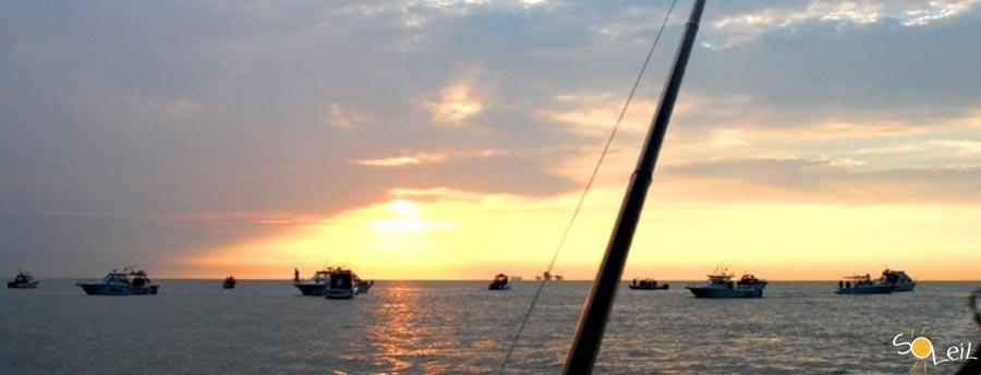 charter pesca altura liguira