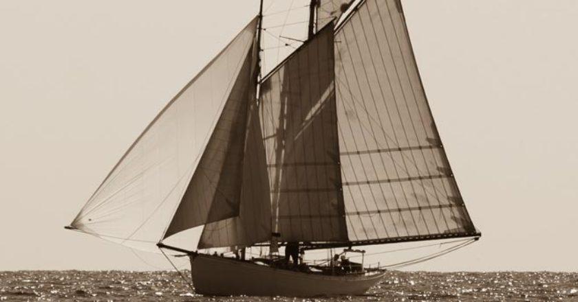 tipi di vela