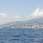 Sanremo Daily Sailing Tours