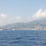 Tagessegelurlaub in Sanremo